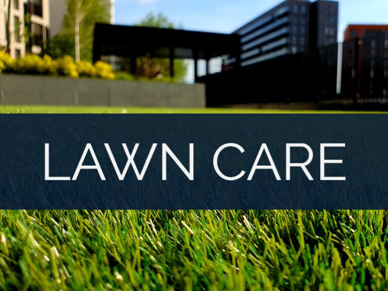 ECHELON LOCAL - ATLANTA GA | INTERNET MARKETING SERVICE | GROW YOUR BUSINESS | Lawn Care - Industry