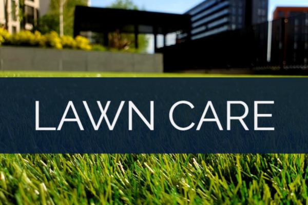 ECHELON LOCAL - ATLANTA GA | INTERNET MARKETING SERVICE | GROW YOUR BUSINESS | Lawn Care - Industry